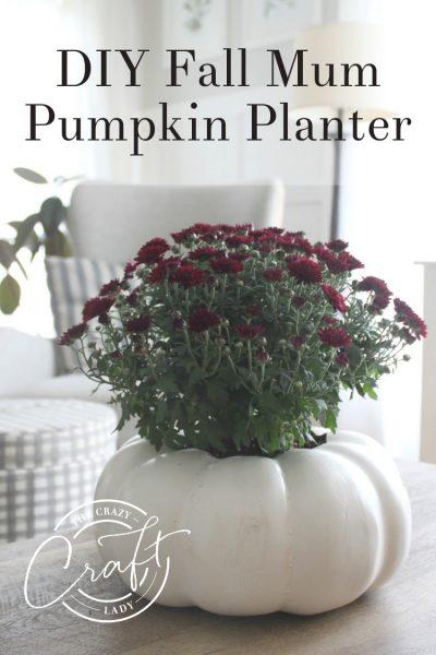 Easy No-Mess DIY Fall Mum Pumpkin Planter