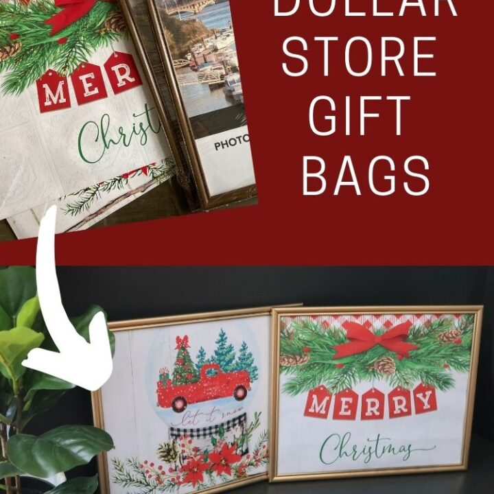 Framed Dollar Store Gift Bags - before and after