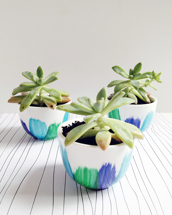 DIY Upcycled Teacup Planter Craft