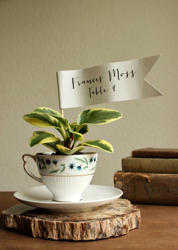 Teacup Planter Favors