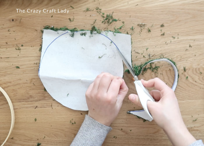 cut the moss into a circle the size of the embroidery hoop