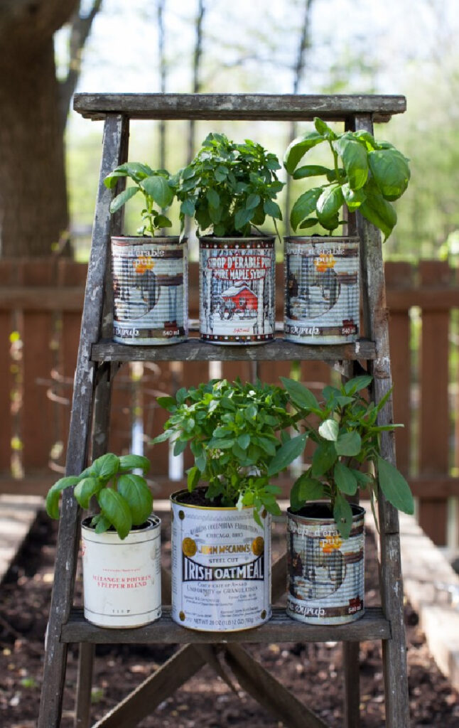 old step ladder and tin can planter