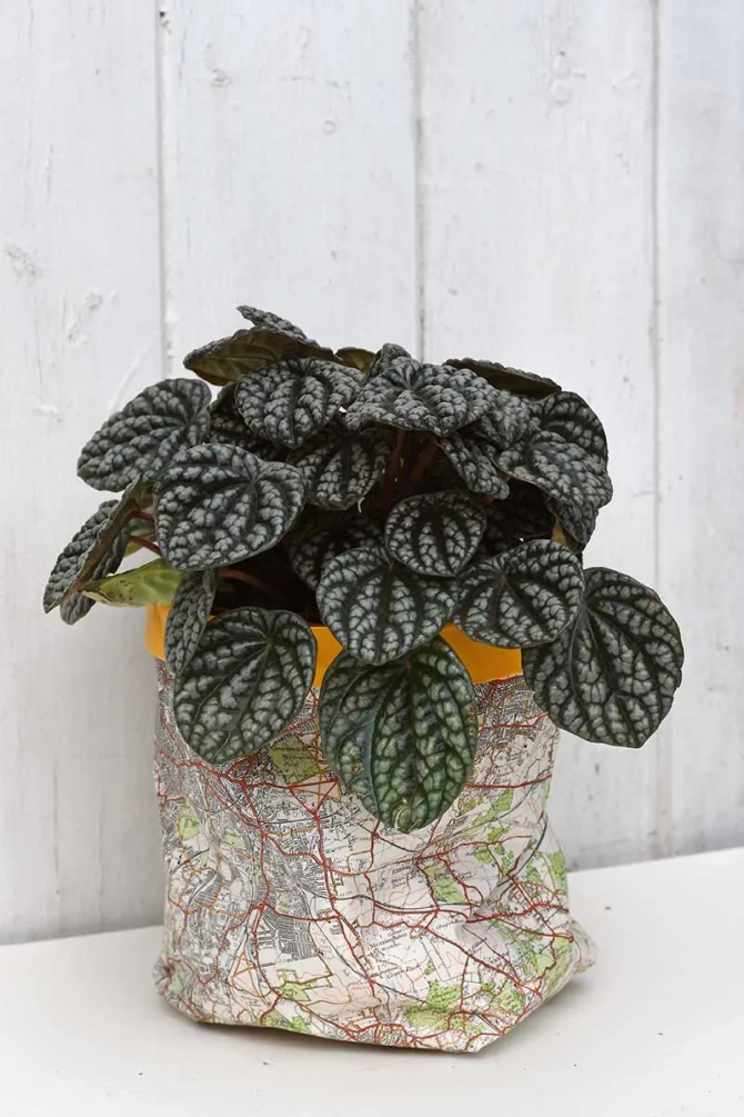 Road Map Plant Pot Covers