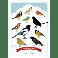 Design We Love : Bird Screen Prints : Finch & Robin