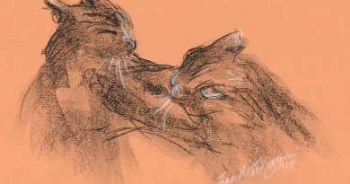 sketch of two cats wrestling, vine charcoal, compressed charcoal, white charcoal, black and white conté