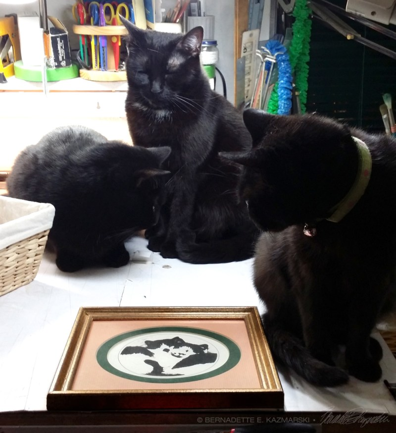 three black cats with print