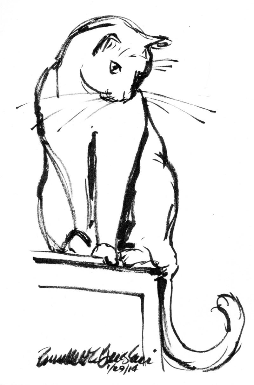 brush pen sketch of cat on shelf
