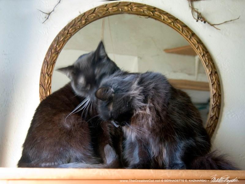 Hamlet comforting Giuseppe.
