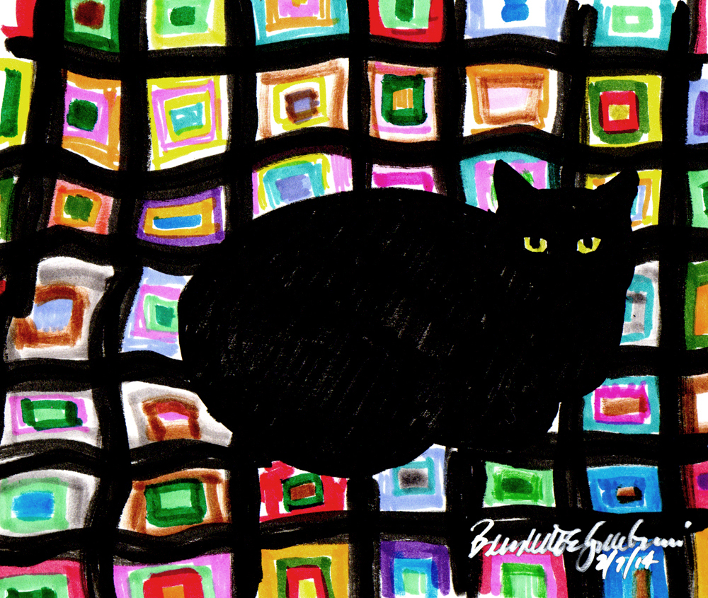 black cat on colorful afghan