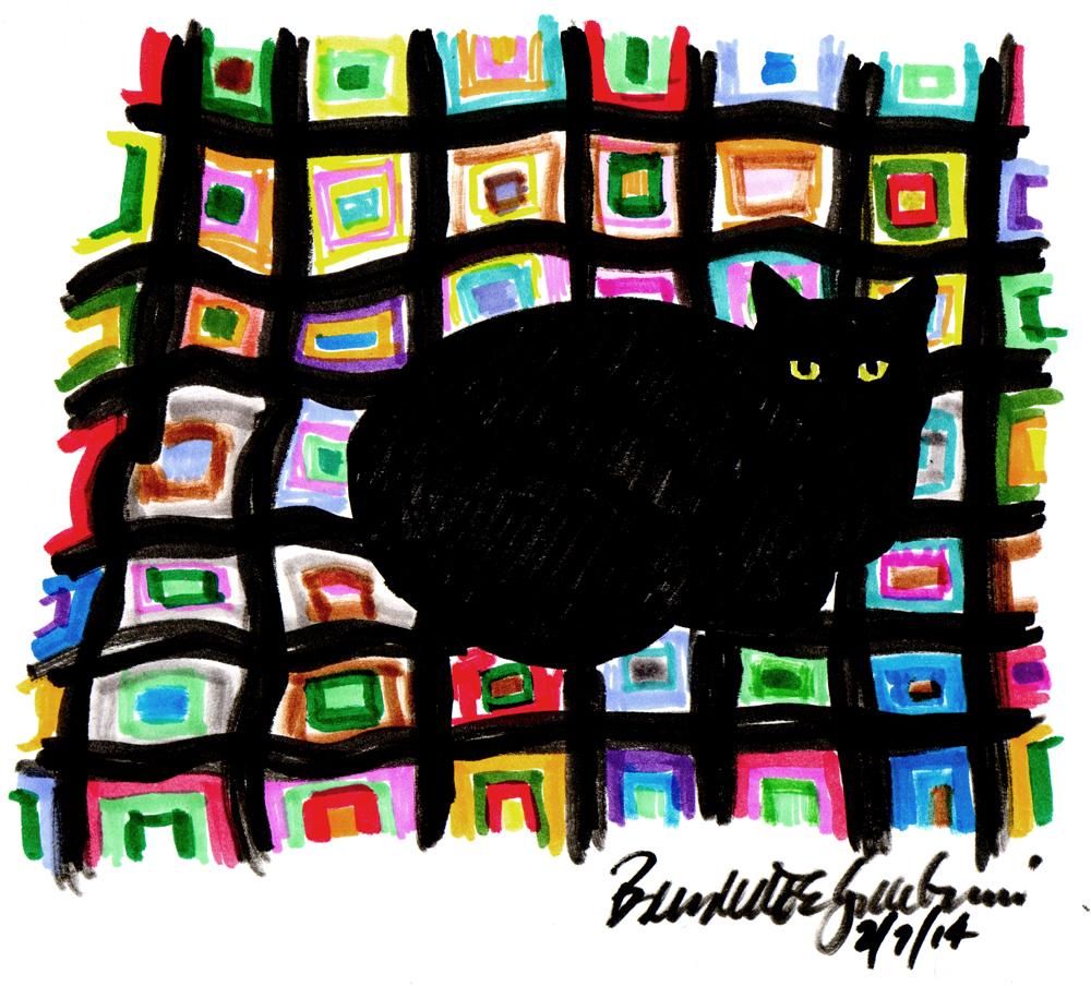black cat on colorufl afghan