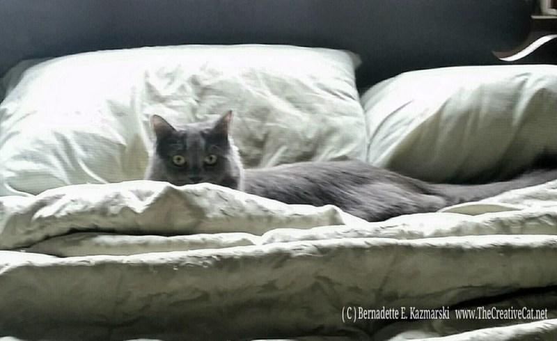 Ophelia Camouflaged.