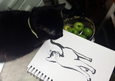 black cat with sketch