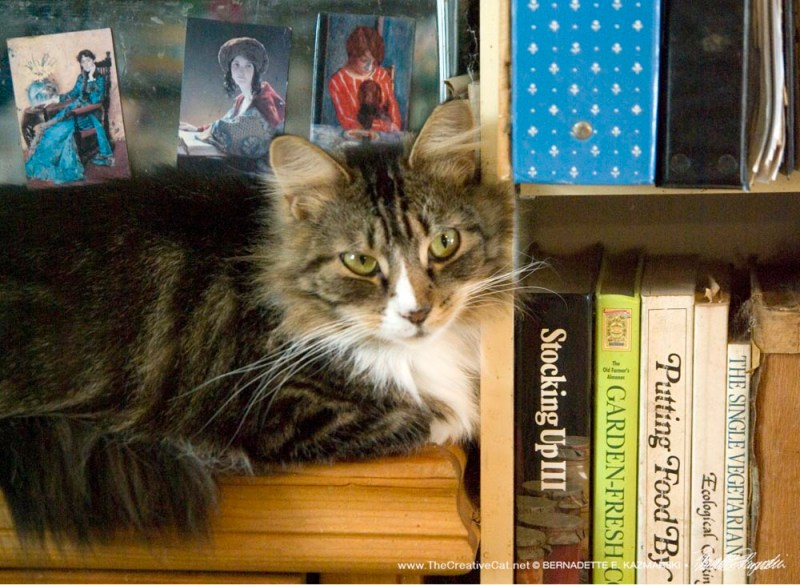 Mariposa thinks these cookbooks are pretty useless.