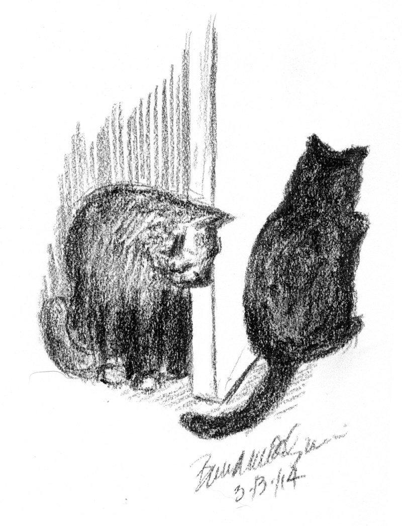 charcoal drawing of two cats