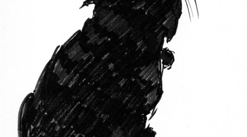 brush marker sketch of cat