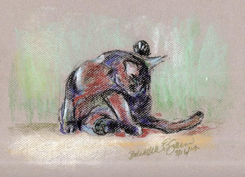 """Energetic Bath"", Nupastel, conté, charcoal pencil, 8"" x 11"" © B.E. Kazmarski"