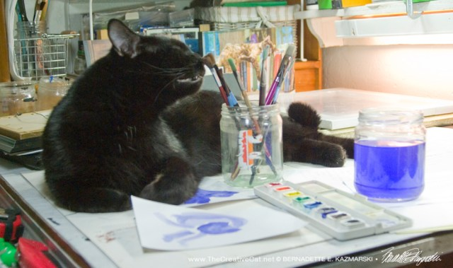 Mewsette checks the brushes for signs of interesting things.
