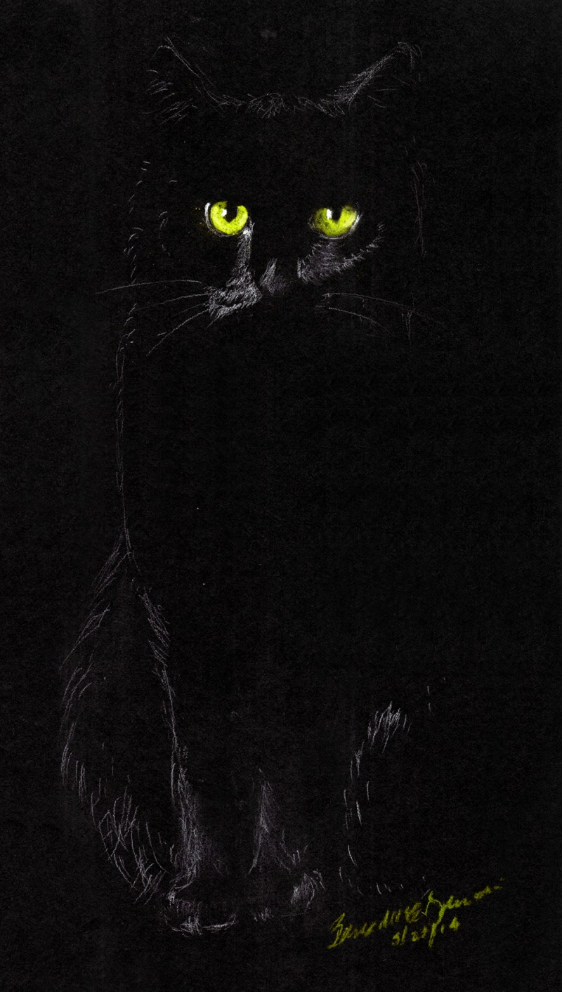 """Sitting in the Dark"", white charcoal and pastel pencils on black paper, 6"" x 10"" © Bernadette E. Kazmarski"