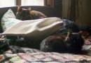 A nap intererupted.