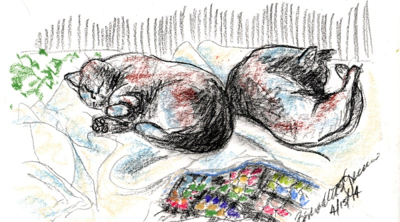 charcoal pastel sketch of two cats sleeping