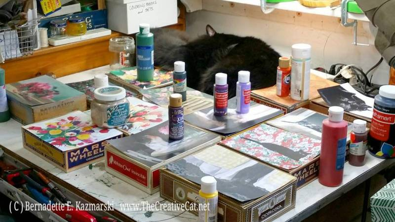 two black cats sleeping with keepsake boxes