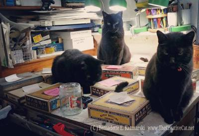 three black cats with cigar box keepsake boxes