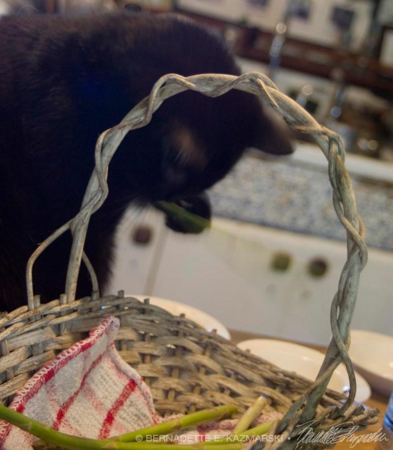 black cat wiht asparagus