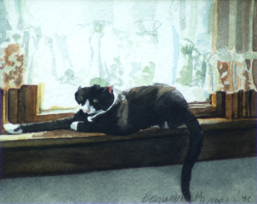 greeting card with tuxie cat