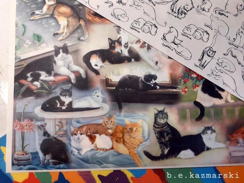 22 cats new pattern