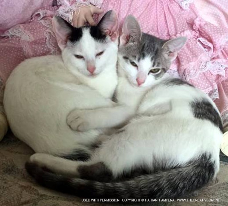 Minnie and Delaney