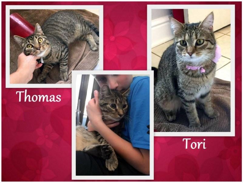 Thomas and Tori