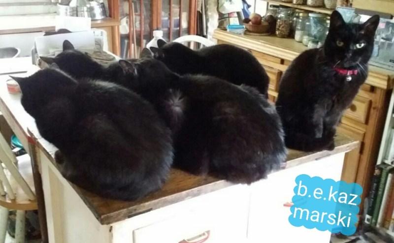 A strange formation.