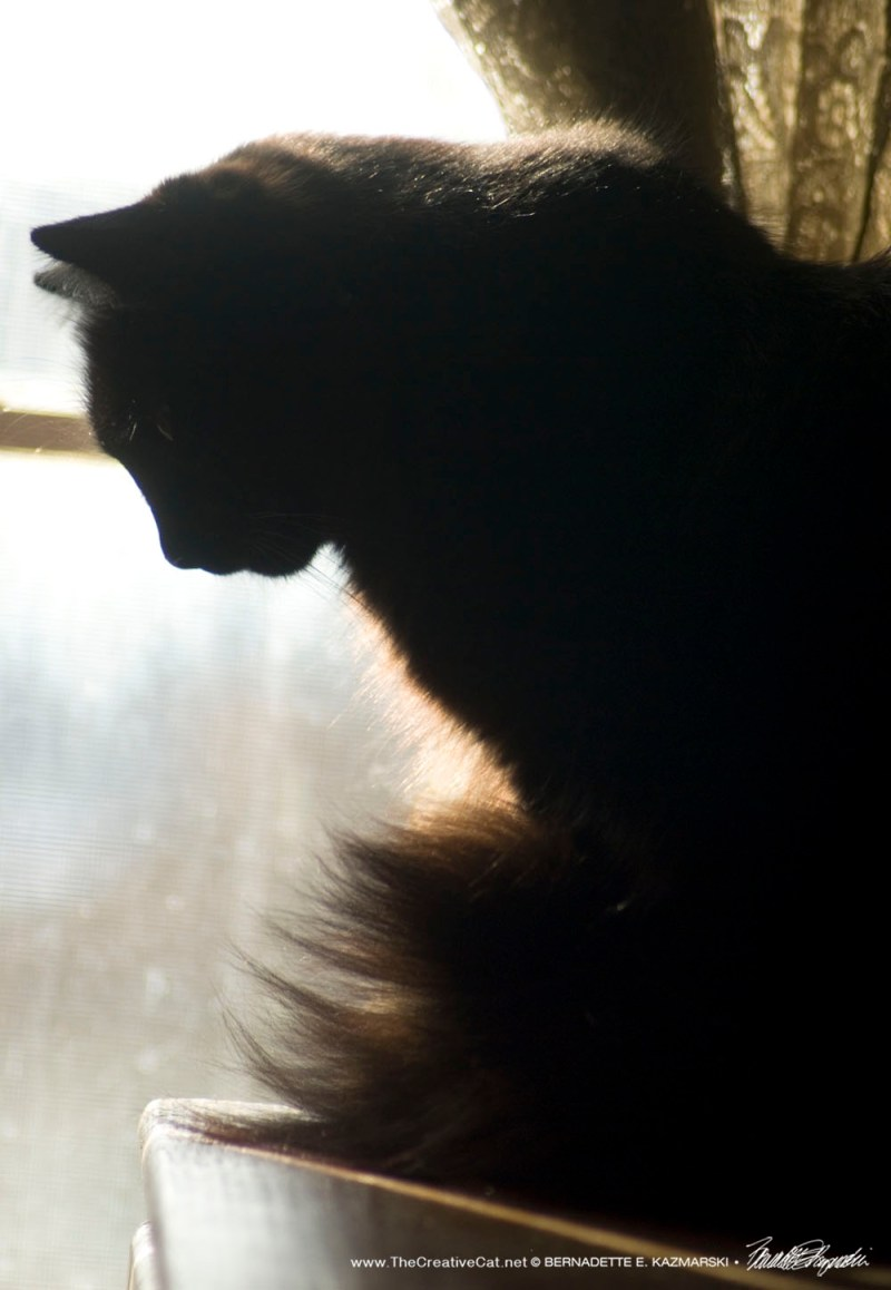Hamlet at the window, 1