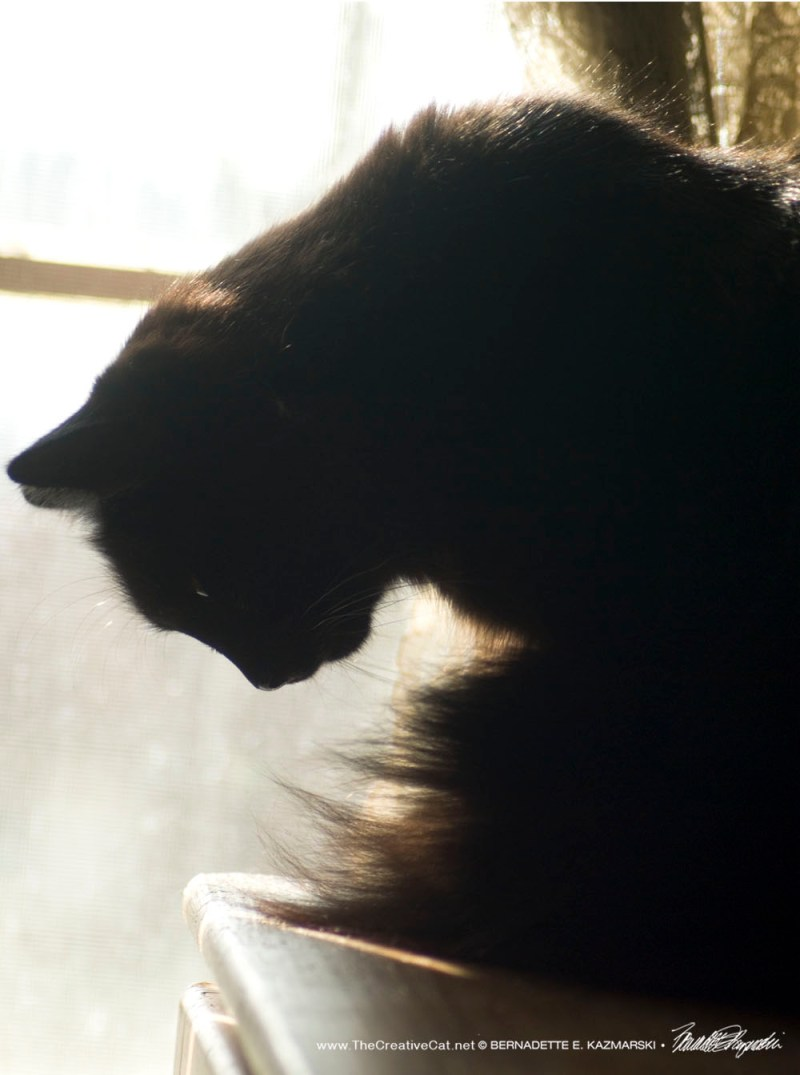 Hamlet at the window, 3