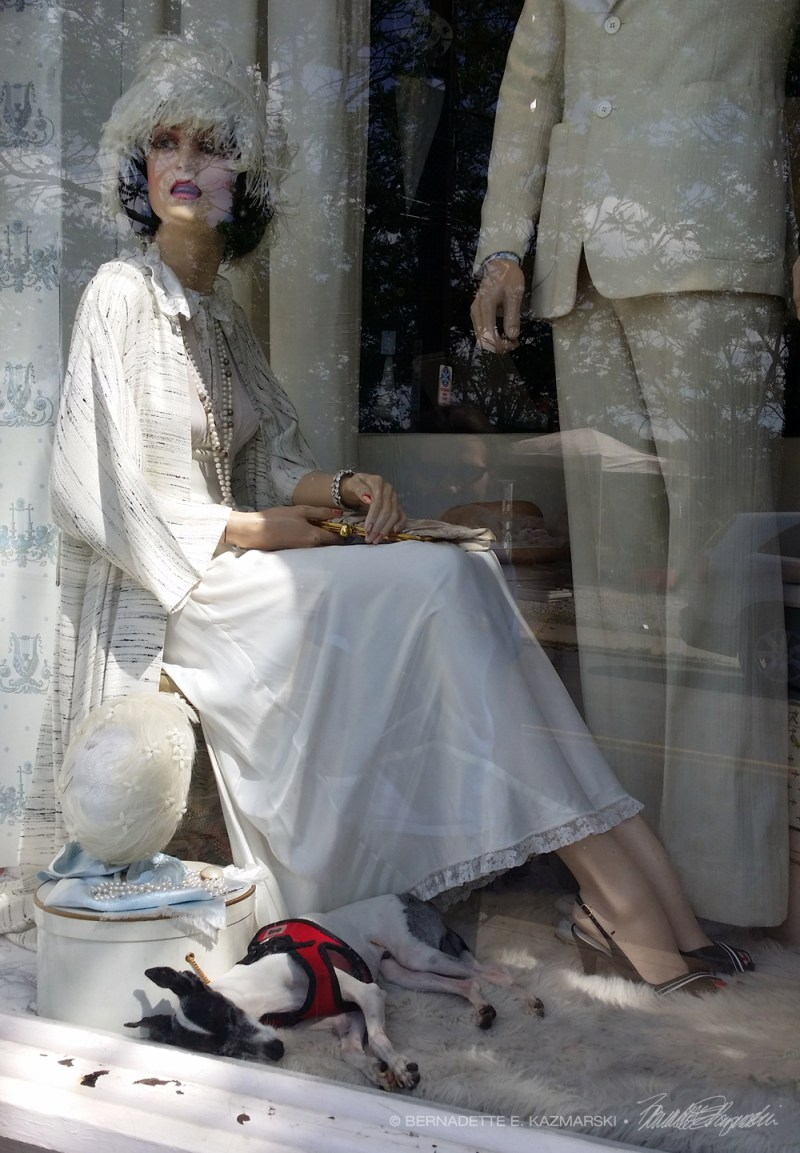 window with vintage clothing and dog