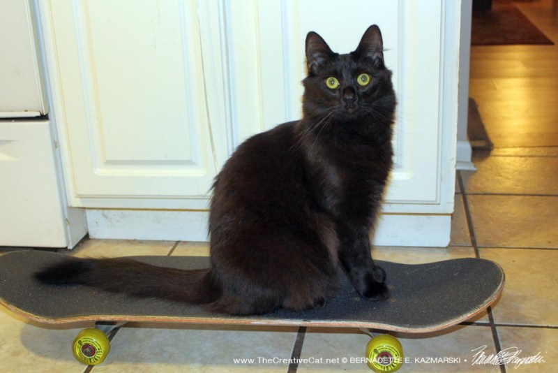 Simon on the skateboard.
