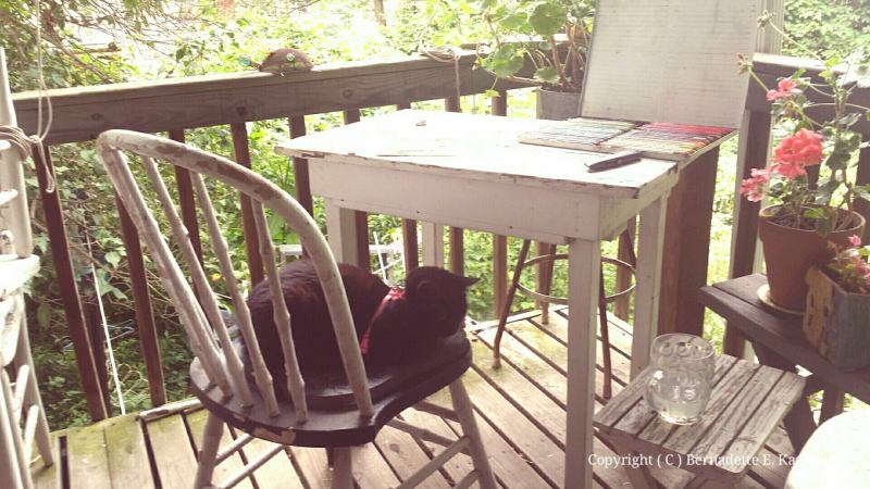 It even happens when you're working outside. I stood up from my worktable and Mimi stepped on my chair and settled down as if she'd been there all day.