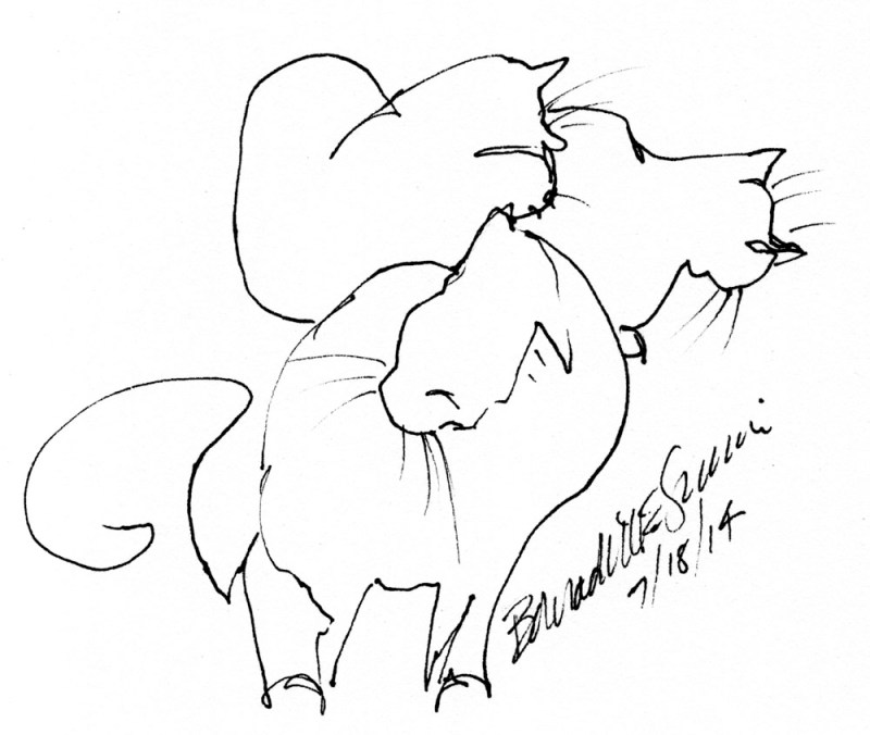 ink sketch of three cats