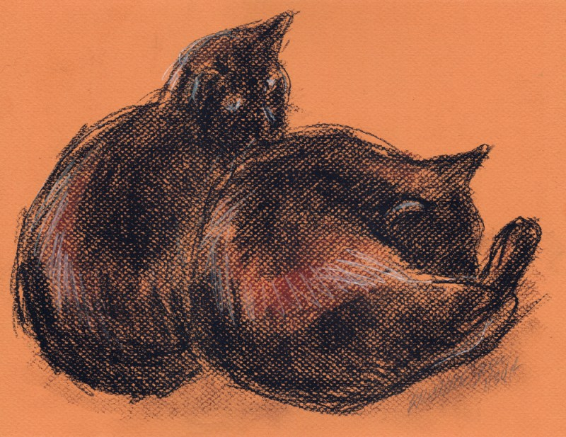 sketch of two black cats