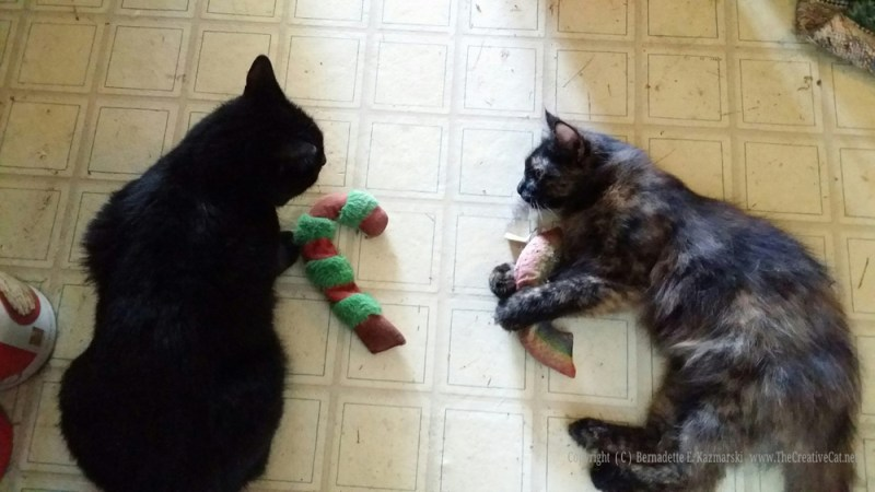 Mewsette and Charm have a catnip party.
