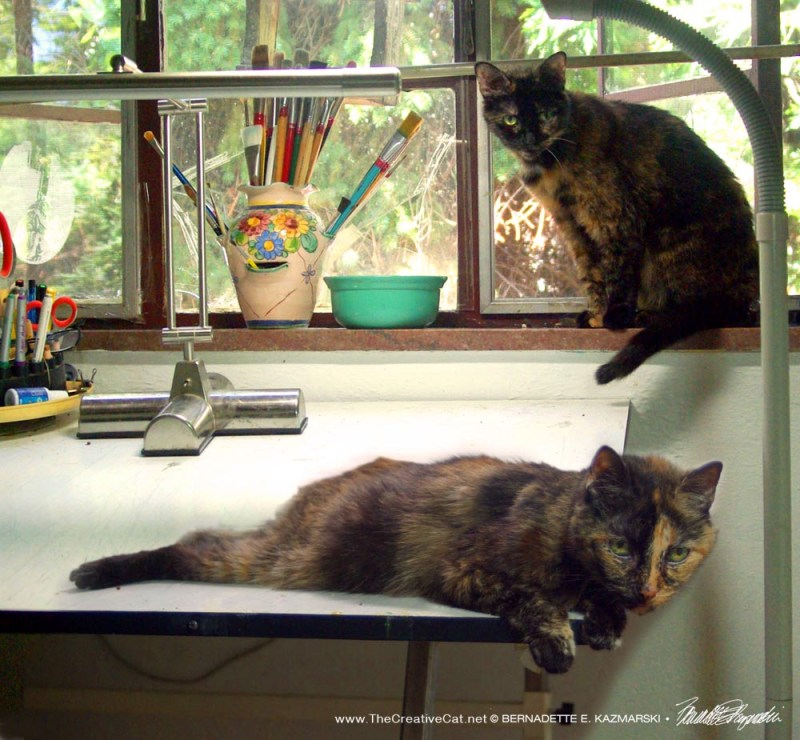 Tortie Girls reporting for work.