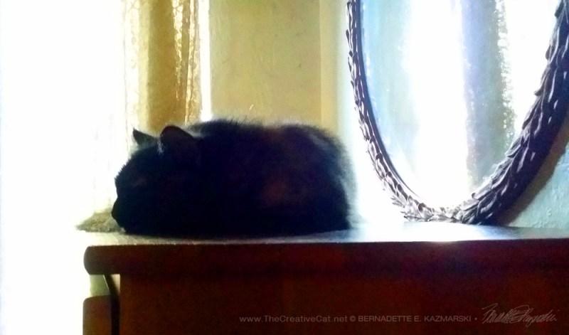 A Charmee nap.