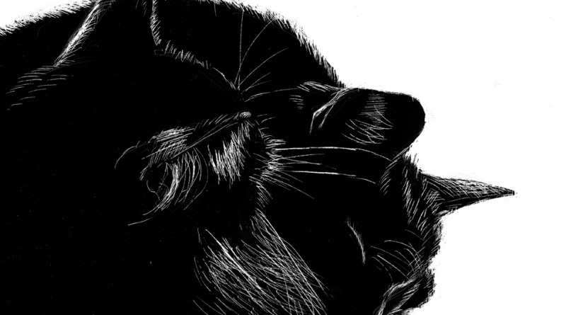 scratchboard of two black cats