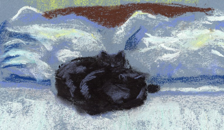pastel sketch of two black cats on bed