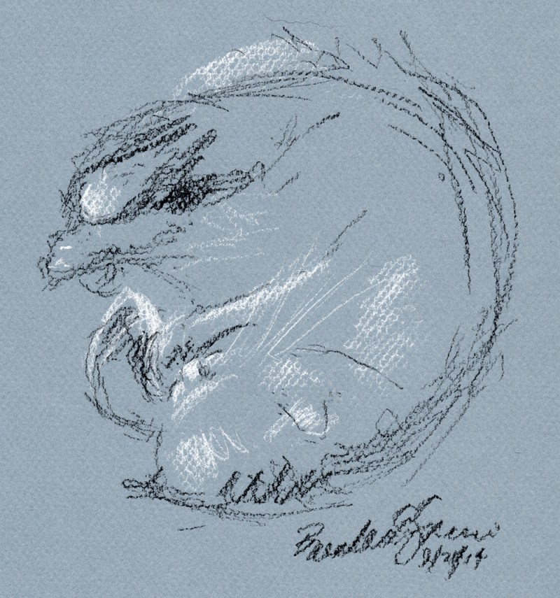 sketch of cat napping