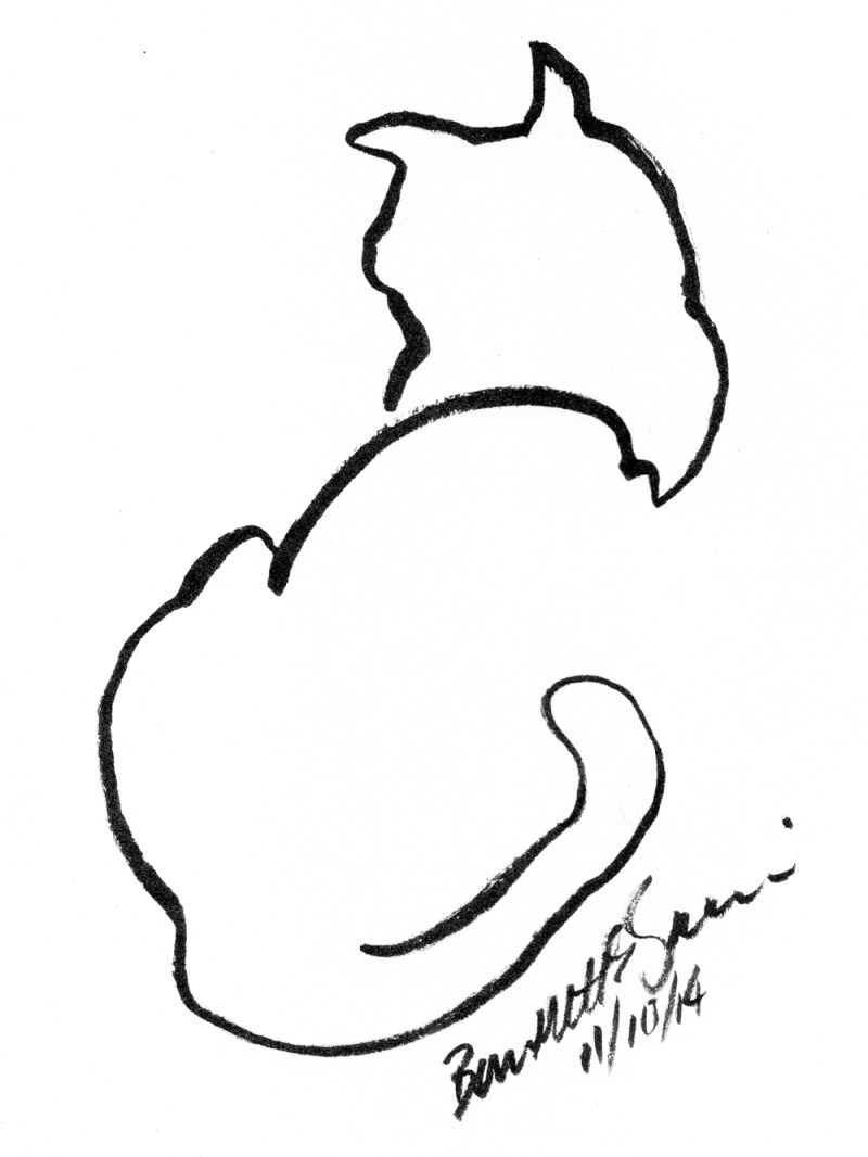 brush pen drawing of cat