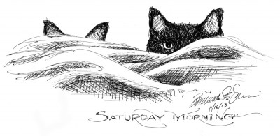 ink sketch of two cats looking over covers