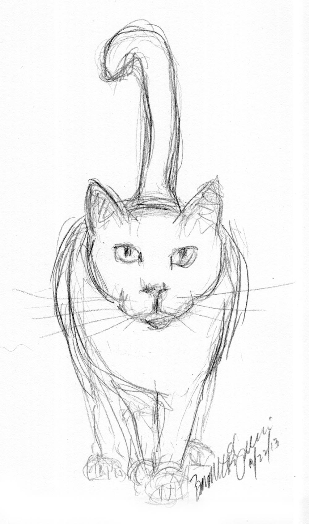 It is a graphic of Declarative Drawing Cartoon Cat Front Facing