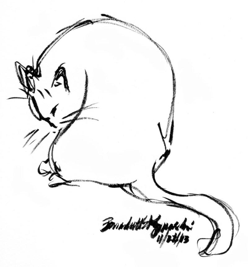 ink brush pen sketch of cat bathing