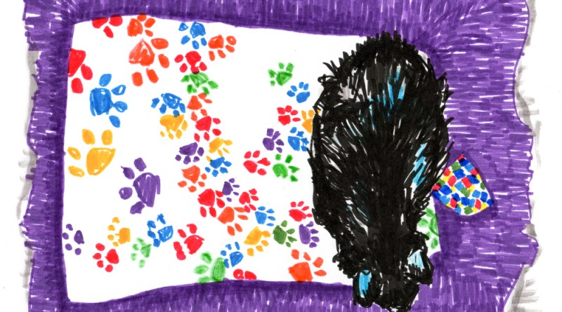 marker sketch of cat on rug